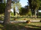 Parco_2